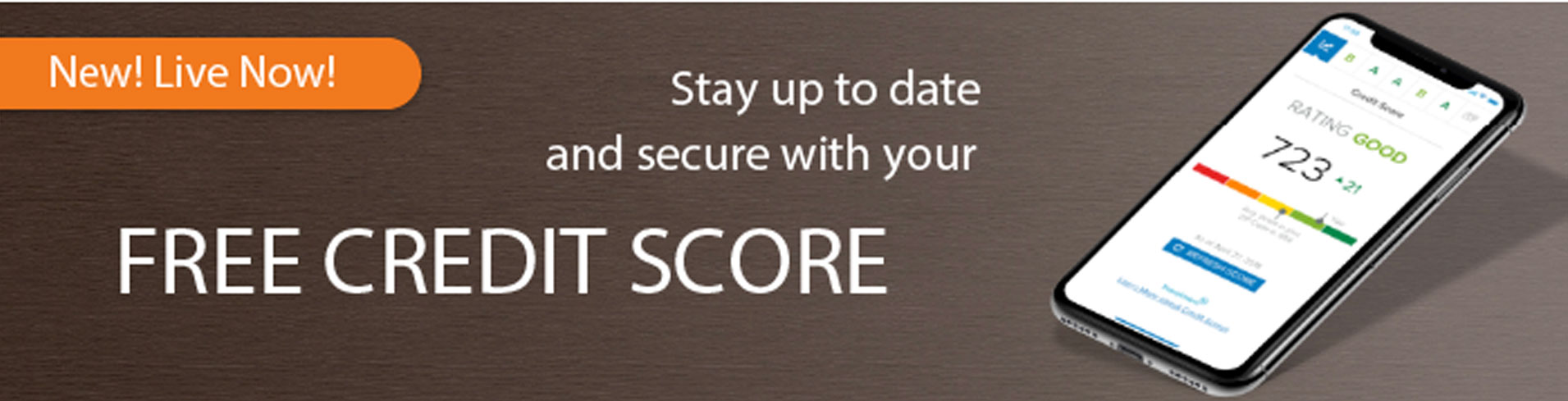 Stay up to date and secure with your free credit score
